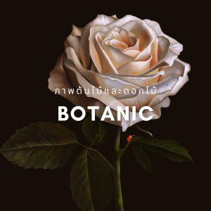 botanic รูปภาพแต่งบ้านติดผนัง PENNELLO