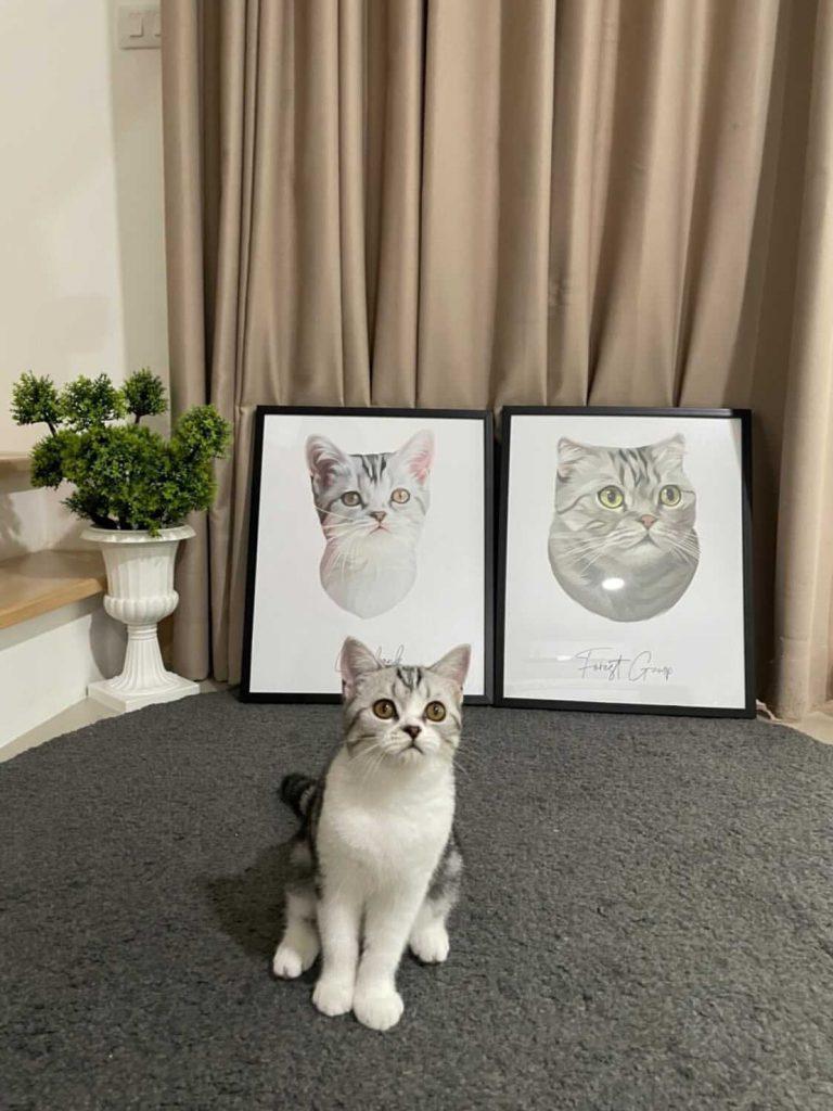 วาดรูปแมว วาดรูปสุนัข หมา รูปคู่ ของขวัญ